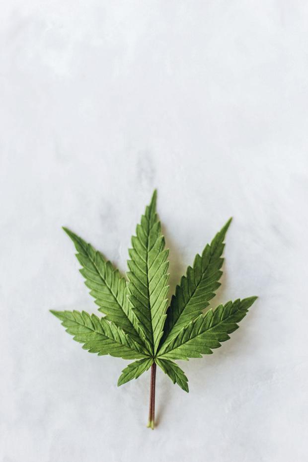 Belgisch cannabisbedrijf overgenomen