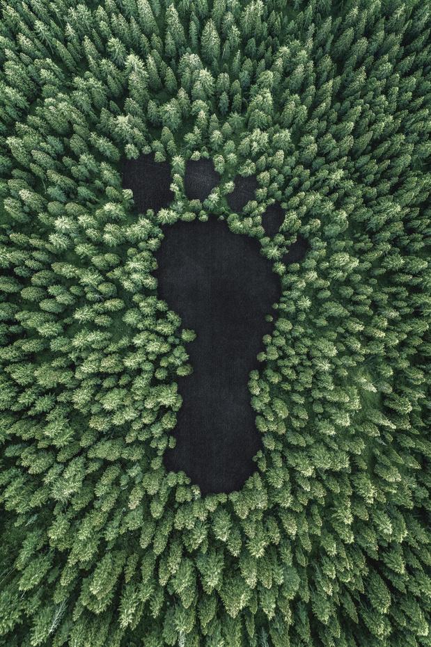 Duurzaamheidsdocumenten digitaliseren