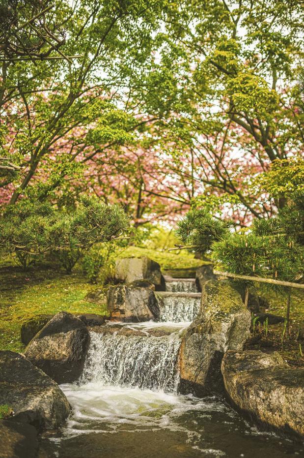Le Japon près de chez vous