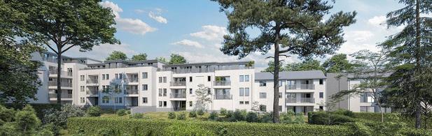 Warandeveld (new)