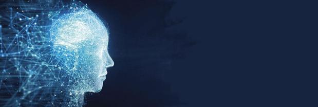 Wij en onze hersenen