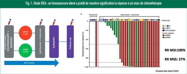 Carcinome du côlon: caractérisation immunologique et biomarqueurs pour l'immunothérapie