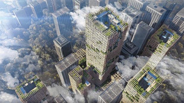 À Anvers, le premier gratte-ciel en bois du pays