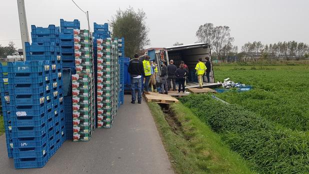 Vrachtwagen met twintig ton tomaten belandt in de gracht in Eernegem