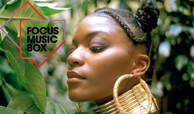 1 Focus Music Box: Roxy Rose