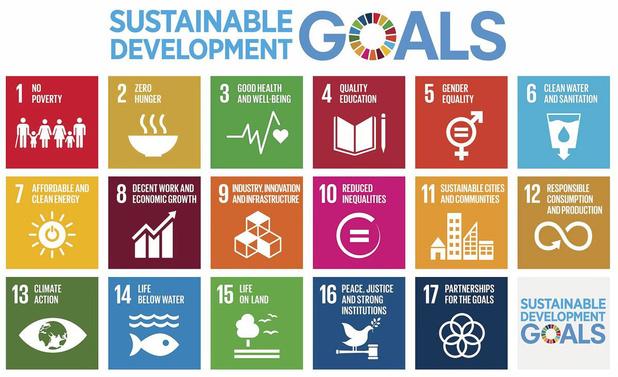 Zeven strategieën om duurzaam te beleggen
