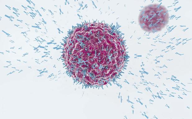 Coronavirus: l'immense espoir de l'immunothérapie