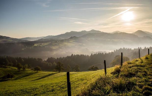 Culinaire ontdekkingsreis: het terroir van de bergen in het Bregenzerwald