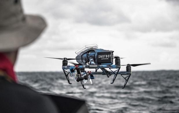 SnotBot, le drone qui permet de connaître les baleines grâce à leur mucus