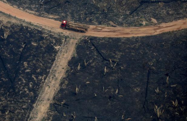 Europese multinationals zetten druk op Brazilië om ontbossing