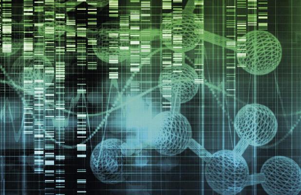 Étude belge sur les modifications dynamiques dans le microenvironnement tumoral pendant l'immunothérapie