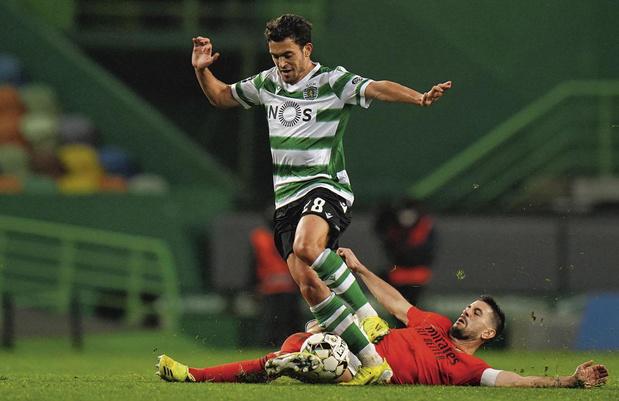 De leeuw van Lissabon brult weer: hoe Sporting na jaren opnieuw meedoet voor de Portugese titel