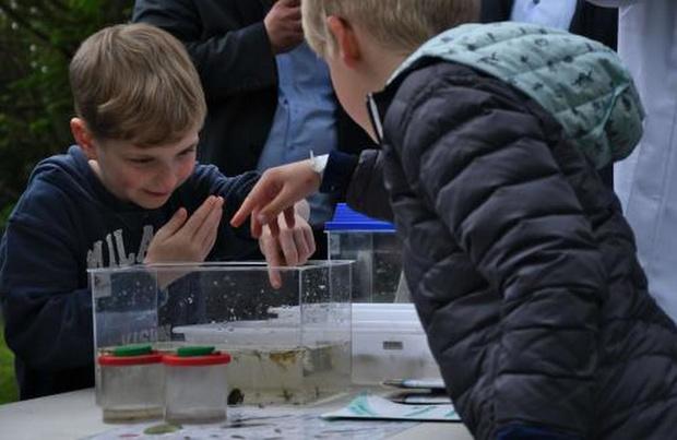 Alle 64 gemeenten nemen deel aan 'Ik zomer West-Vlaams'