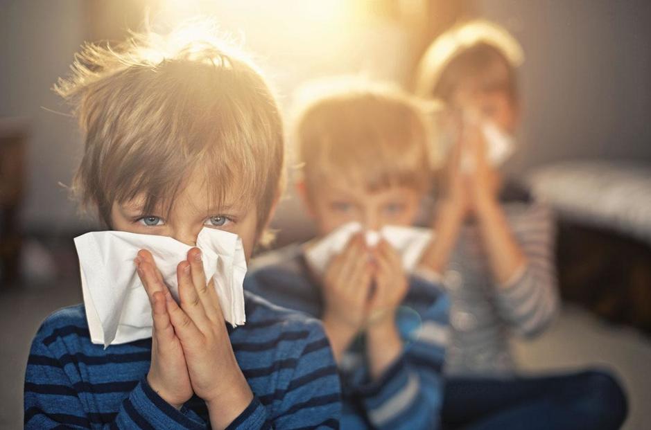 Voeding, pollen, onkruid: hoe valt de opmars van allergieën te verklaren?