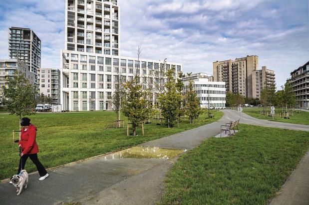 Samentuinen in Antwerpen