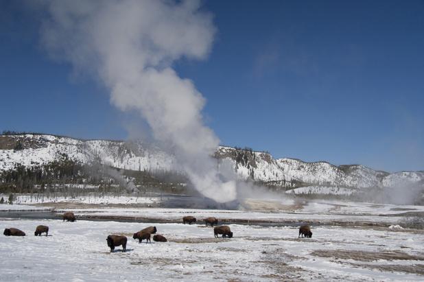 Reisvideo: Yellowstone zoals de toeristen het niet zien
