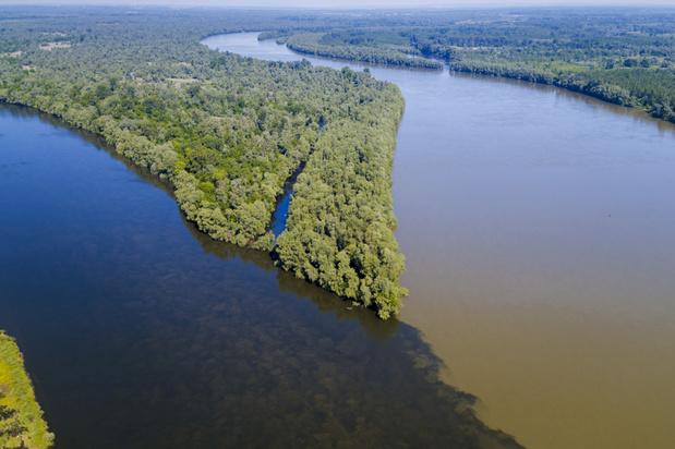 'Amazonegebied van Europa' wordt eerste grensoverschrijdende biosfeerreservaat ter wereld