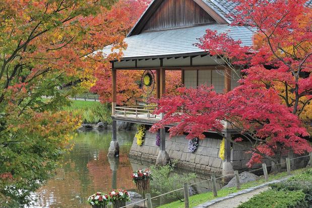 Le jardin japonais de Hasselt