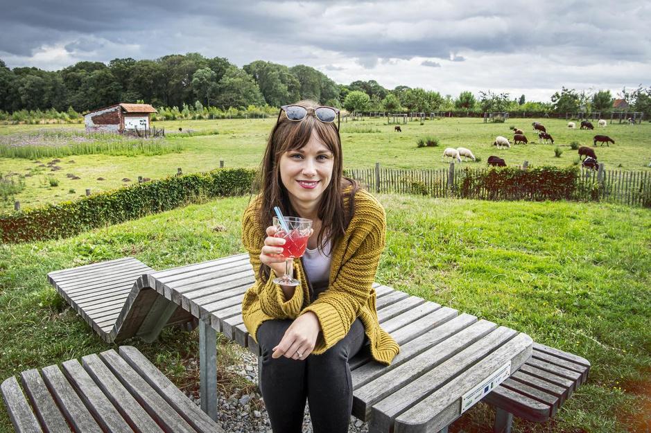 De mooiste picknickplekjes van West-Vlaanderen en Limburg