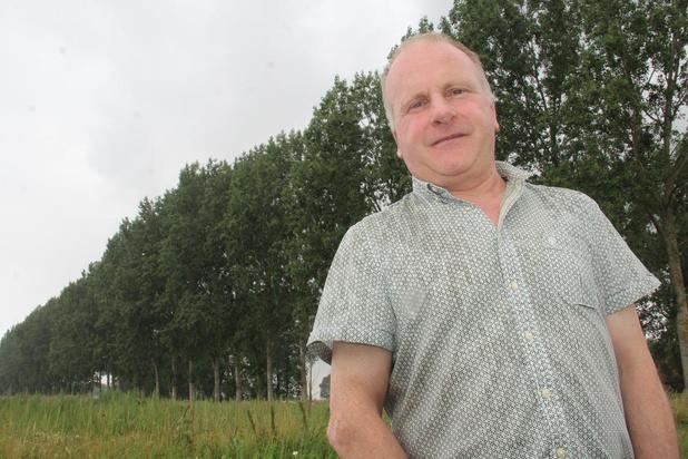 Beruchte boomactivist start procedure om populieren Groenedreef te redden van de kap