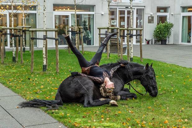 Bewoners Residentie Hardoy genieten met volle teugen van paardenshow