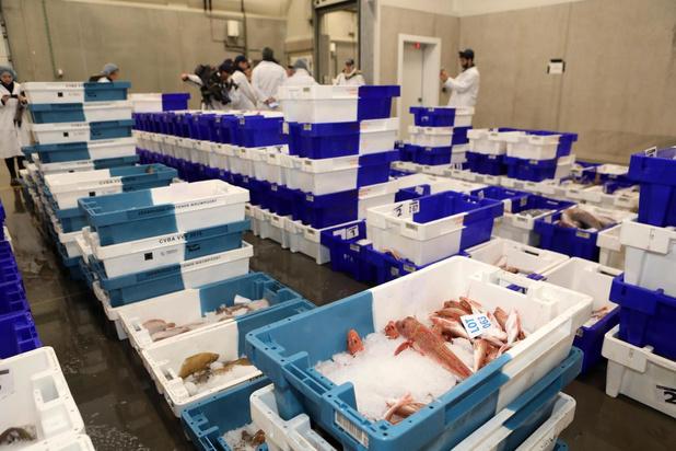 Campagne voor vis van bij ons moet vissers steunen in moeilijke coronatijden