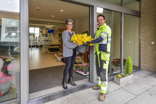 Dries Rousseau schenkt Paasbloemen en tulpen aan rusthuizen in Wervik en Geluwe