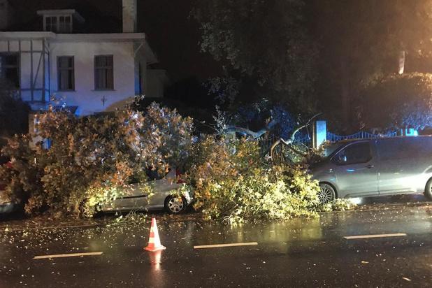 Stormschade in Ieper en Poperinge door storm Odette