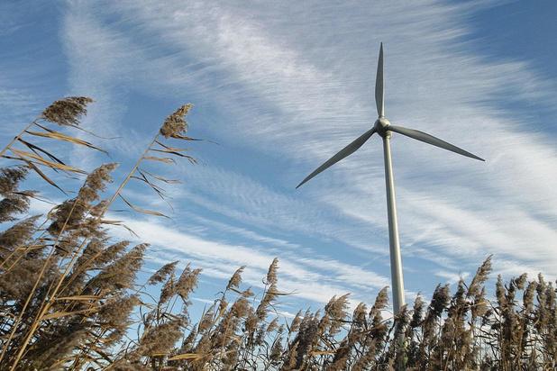 La Belgique parmi les moins bons élèves européens de l'énergie renouvelable en 2019