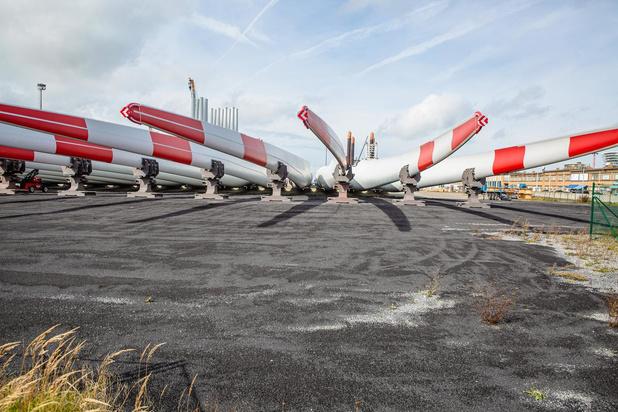 Oostendse haven en luchthaven vangen ene grote vis na de andere