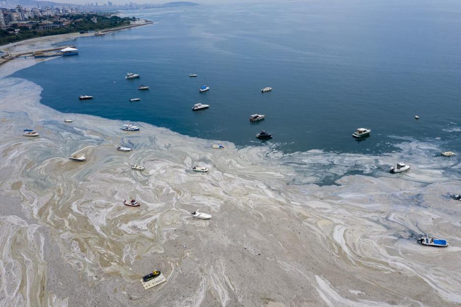 In beeld: Zee van Marmara in Turkije stikt door zeesnot