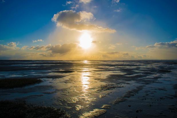 Geologen ontdekken uitgedoofde vulkaan ten noorden van Texel