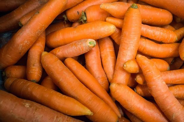 """Twee besmettingen bij Ardo: """"Maandag gaan we alle personeel van 'de wortelwasserij' testen"""""""