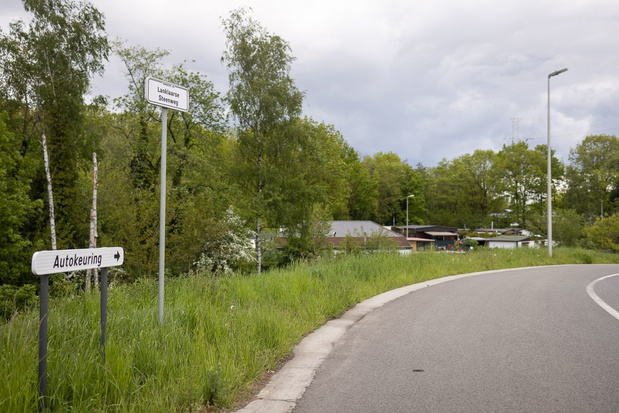 Zoekactie in Nationaal Park Hoge Kempen naar Conings: geen aanwijzingen dat hij overleden is