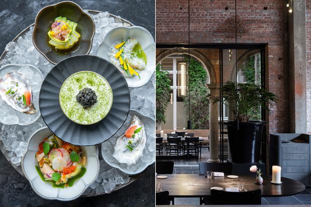 Le Pristine in Antwerpen: een culinaire totaalbeleving op hoog niveau