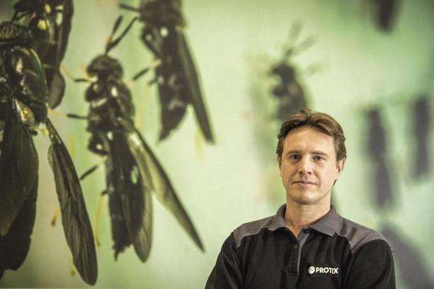 'Insecten zijn een enorm rijke grondstof'