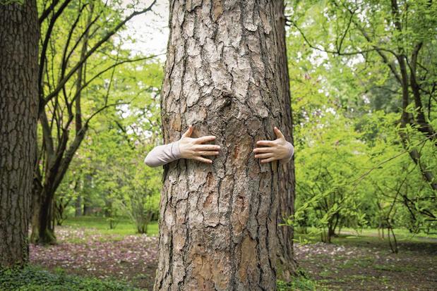 Et si... on renouait avec la nature ?