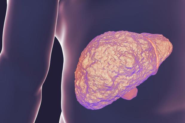 Nieuwe techniek speurt vroegtijdig naar leverziekten