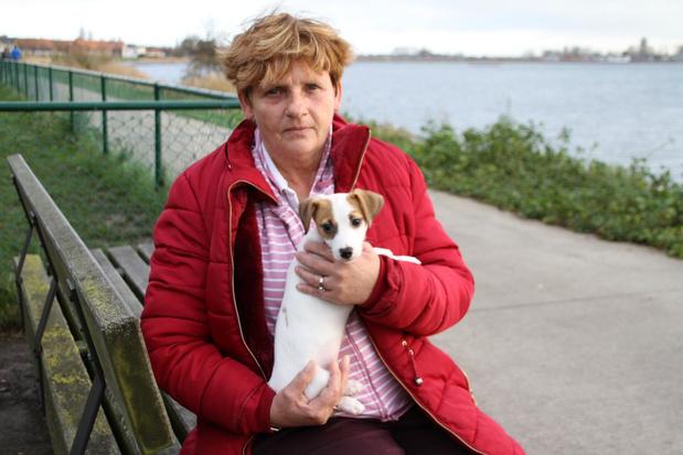 Hondje Laika sterft pijnlijke dood na het eten van rattenvergif in Oostende