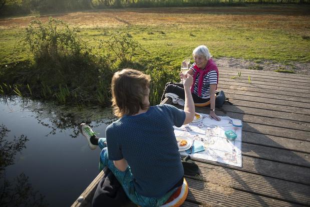9 magische plekken in de Nederlandse natuur
