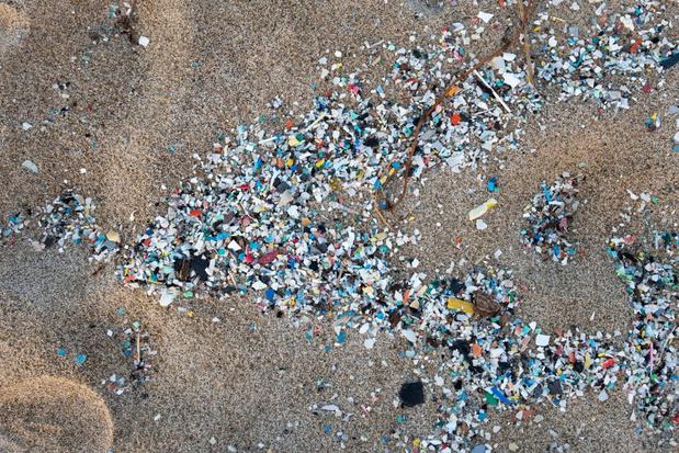 Plastic afval op stranden zorgt voor overschot aan vrouwelijke schildpadden