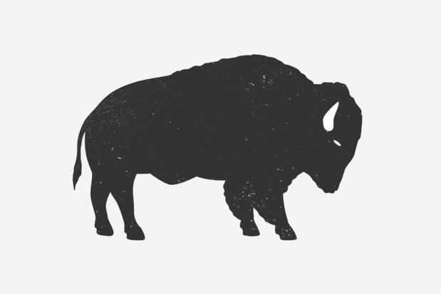 2021 is het jaar van de buffel: tijd voor een wedergeboorte!