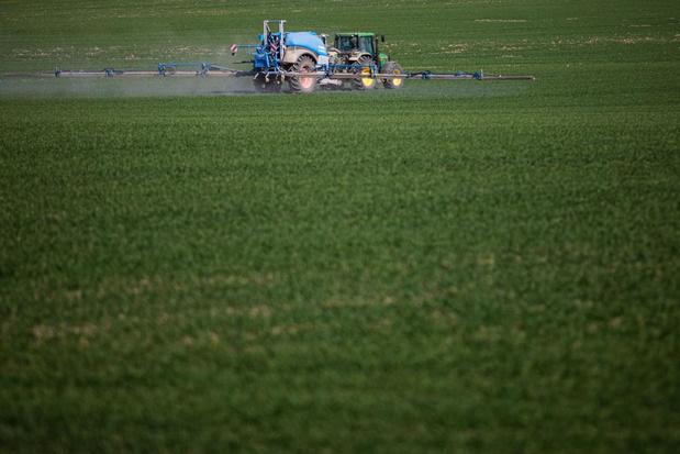 Landbouwer weigert gemeentelijke gronden terug te geven aan Beernem