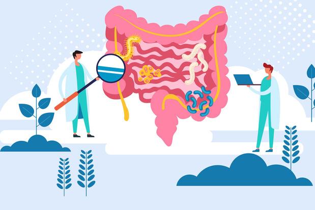 12 questions sur les intestins