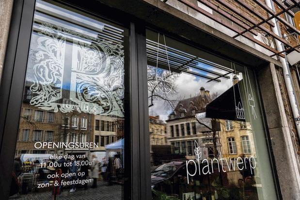 Museum Plantin-Moretus stelt online 14.000 afbeeldingen ter beschikking