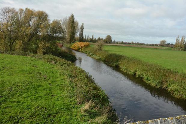 """De Mandel niet langer een dode rivier: """"We zien op meerdere plaatsen visjes zwemmen"""""""