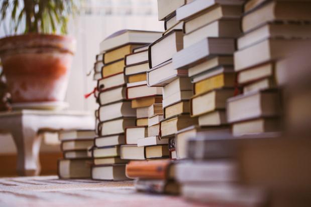 'Verwerft een schrijver, omdat hij publiceert, het recht op voldoende inkomsten?'