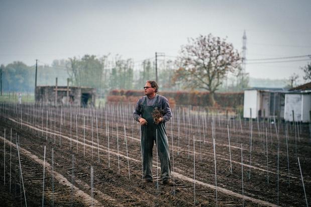 Marino Moenaert plant nieuwe wijngaard voor mousserende wijnen