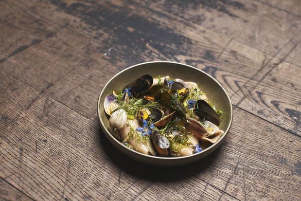 Recette des Conchiglie, coquillages, laitue de mer, poutargue, lime du chef Paul Delrez de la Guinguette en ville