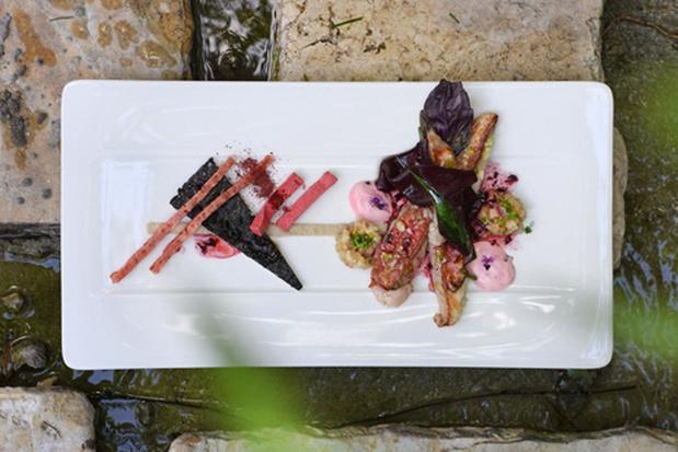Zeebarbeel met artisjok, rode basilicum, rode biet, zwarte olijven en daslook